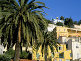 Houses and Palms, Menton, Alpes-Maritimes, Cote d'Azur, Provence, France Photographic Print by Ruth Tomlinson