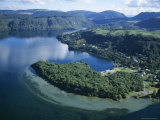 Local Lakes Surrounded by Forests and Giant Ferns, Rotorua, South Auckland, New Zealand Photographic Print by D H Webster