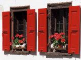 Red Shuttered Windows and Geraniums, Tasch, Near Zermatt, Valais, Switzerland Photographic Print by Ruth Tomlinson