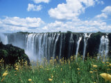 Flowers in Bloom with the Victoria Falls Behind, Unesco World Heritage Site, Zambia, Africa Fotografisk tryk af D H Webster