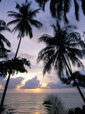 Sunset Framed by Palms, Patong, Phuket, Thailand, Southeast Asia, Aisa Photographic Print by Ruth Tomlinson