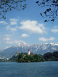 Lake Bled, Slovenia Photographic Print by Adina Tovy