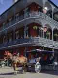 Adina Tovy - Horse and Carriage in the French Quarter, New Orleans, Louisiana, USA Fotografická reprodukce