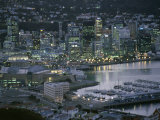 Te Papa Museum Marina and City Lights in the Evening, Wellington, North Island, New Zealand Photographic Print by D H Webster
