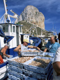 Fish Being Landed, Calpe, the Penyal d'Ifach Towering Above the Harbour, Alicante, Valencia, Spain Photographic Print by Ruth Tomlinson