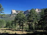 Pine Forest and Cliffs Above the Jucar Gorge, Cuenca, Castilla-La Mancha (New Castile), Spain Photographic Print by Ruth Tomlinson