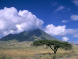 The Masai's Holy Mountain, Tanzania, East Africa, Africa Fotodruck von I Vanderharst