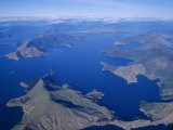 Aerial View, Marlborough Sound, South Island, New Zealand Photographic Print by D H Webster