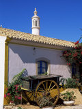 Farmhouse with Cart and Chimney, Silves, Algarve, Portugal Photographic Print by Tom Teegan