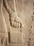 Close up of Carved Relief, Nimrud, Iraq, Middle East Photographic Print by Nico Tondini