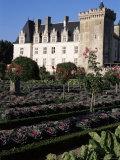 Gardens, Chateau De Villandry, Indre-Et-Loire, Loire Valley, Centre, France Photographic Print by Guy Thouvenin