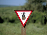 Dung Beetle Road Sign to Discourage Dung Beetle Roadkills, Addo National Park, South Africa, Africa Photographic Print by Steve & Ann Toon