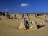 Limestone Pillars in the Pinnacles Desert, Nambung National Park, Western Australia, Australia Photographic Print by Steve & Ann Toon