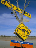 Restaurant Sign for Feral Food, Outback, South Australia, Australia Photographic Print by Steve & Ann Toon