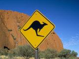 Kangaroo Road Sign at Uluru, Uluru-Kata Tjuta National Park, Northern Territory, Australia Photographic Print by Steve & Ann Toon