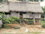 Thatched Homes Along the River, Javari River, Amazon Basin Rainforest, Peru, South America Photographic Print by Alison Wright