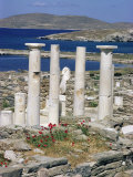 Archaeological Site, Delos, Unesco World Heritage Site, Greece Photographic Print by Adam Woolfitt