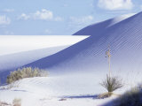 Sand Dunes, White Sands Desert, New Mexico, USA Photographic Print by Adam Woolfitt