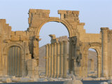 Ruins, Palmyra, Unesco World Heritage Site, Syria, Middle East Photographic Print by Alison Wright