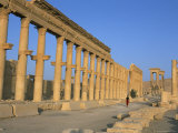 Ruins of the Colonnade, Palmyra, Unesco World Heritage Site, Syria, Middle East Photographic Print by Alison Wright