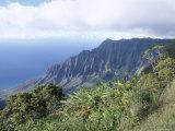 Puu O Kila Lookout on the Na Pali Coast, Kauai, Hawaii, Hawaiian Islands, USA Photographic Print by Alison Wright