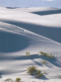 White Sands Desert, New Mexico, USA Photographic Print by Adam Woolfitt