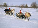 Southern Lapp Man with Reindeer Sledge, Roros, Norway, Scandinavia Photographic Print by Adam Woolfitt