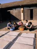Lhokta Paper Drying as Workers Clean More Daphne Plants to Make into Paper on a U.N. Funded Project Photographic Print by Alison Wright