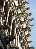 Facade with False Gargoyles, Eglise Notre-Dame, Dijon, Burgundy, France Photographic Print by Adam Woolfitt