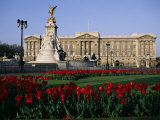 Buckingham Palace, London, England, United Kingdom Photographic Print by Adam Woolfitt