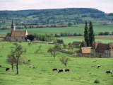 Farms Near Vieux-Pont-En-Ange, Near Boissey, Basse Normandie (Normandy), France Photographic Print by Adam Woolfitt