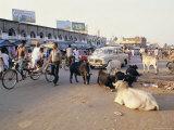 Marketplace, Puri, Orissa State, India Photographic Print by Alison Wright
