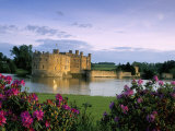Leeds Castle, Kent, England, United Kingdom Photographic Print by Adam Woolfitt