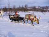 Southern Lapp with Reindeer Sledge, Roros, Norway, Scandinavia Photographic Print by Adam Woolfitt