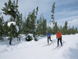 Cross Country Skiing at Rendevous, Western Area of Yellowstone, Montana, USA Photographic Print by Alison Wright