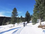 Cross Country Skiing, Lone Mountain, Montana, Western Area, Yellowstone, USA Photographic Print by Alison Wright