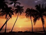Sunset, Kohala Coast, Island of Hawaii, Hawaiian Islands, USA Reproduction photographique