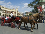 Horse and Carriages in Main Market Square, Old Town District, Krakow, Poland Photographic Print by  R H Productions