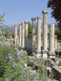 Columns, Archaeological Site, Aphrodisias, Anatolia, Turkey Photographic Print by R H Productions
