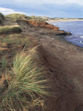 Cavendish Coast, Prince Edward Island, Canada Photographic Print by Alison Wright