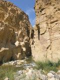Wadi Mujib Gorge, Wadi Mujib, Jordan, Middle East Photographic Print by Alison Wright
