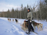Dog Sledding with Aventure Inukshuk, Quebec, Canada Photographic Print by Alison Wright