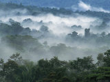 Rain Forest, from Lubaantun to Maya Mountains, Belize, Central America Photographic Print by  Upperhall
