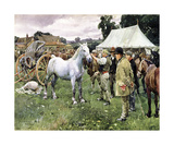 Horse Sale Premium Giclee Print by Sir Alfred Munnings