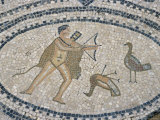 Mosaic Floor of Hunting Scene, Roman Archaeological Site of Volubilis, North Africa Photographic Print by  R H Productions