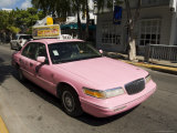 Pink Taxis, Duval Street, Key West, Florida, USA Photographic Print by  R H Productions