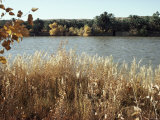 Autumn, Ana, on the River Euphrates, Iraq, Middle East Photographic Print