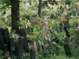 Old Jewish Cemetery, Josefov, Prague, Czech Republic Photographic Print by  Upperhall