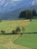 Farmland in the High Tatra Mountains Near Zdiar and Polish Border, Slovakia Photographic Print by  Upperhall