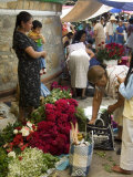 Market Day at Zaachila, Oaxaca, Mexico, North America Photographic Print by  R H Productions